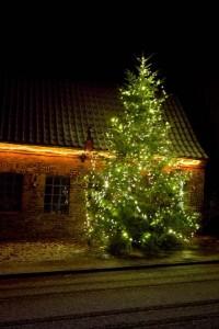 Lutterbek Weihnachtsbaum